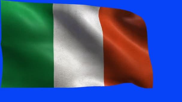 Bandera de Irlanda, la Bandera irlandesa - lazo — Vídeo de stock