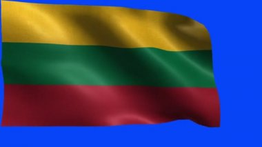 Republic of Lithuania, Flag of Lithuania, Lithuanian Flag - LOOP — Stock Video