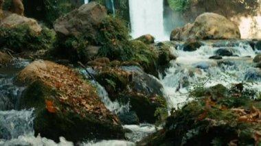 Waterfall — Stock Video