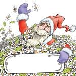 Santa claus among flowers — Stock Photo #58886549