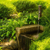 Water Spout in Japanese Garden — Stock Photo
