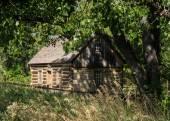 Cabin of Theodore Roosevelt's Maltese Cross Ranch — Stock Photo