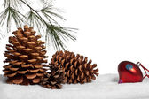 Pine cones with bough and ornament in snow — Stock Photo