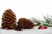 Pine cones with bough and ornaments in snow — Stock Photo