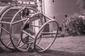 Bellezza urbana — Foto Stock