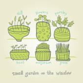 Small green garden on the window — Stock Vector