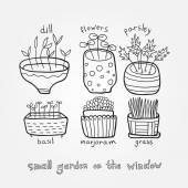 Small garden on the window — Stock Vector