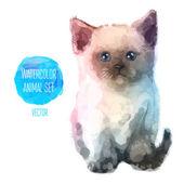 Vector set of watercolor illustrations. Cute cat — Stock Vector