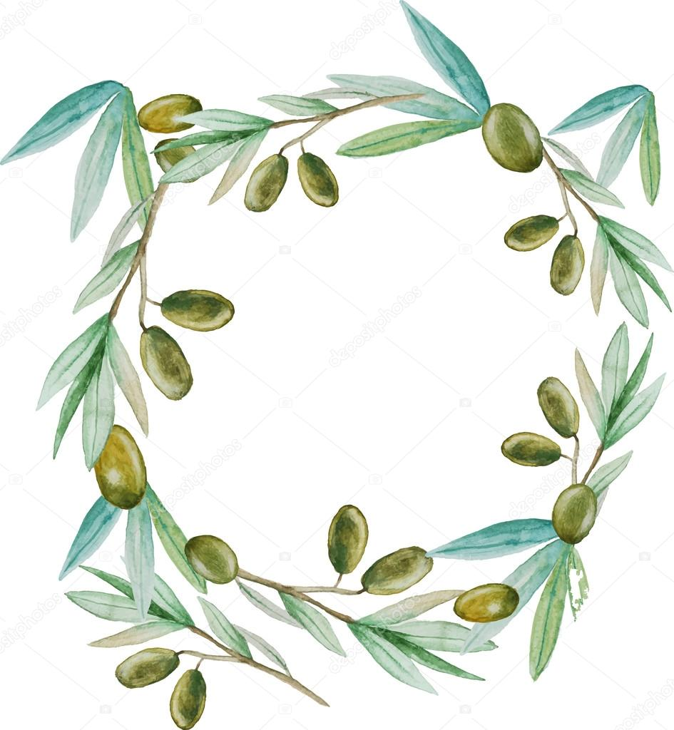 watercolor olive branch wreath background stock vector Olive Branch Drawing Olive Branch Drawing