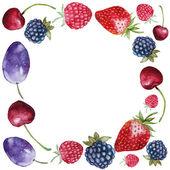 Various fresh berry round frame — Stock Vector