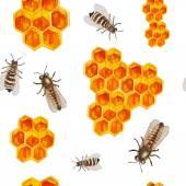 Watercolor honey seamless pattern — Stock Vector