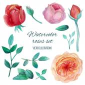 Watercolor garden roses — Vettoriale Stock