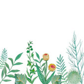 Watercolor herbal elements — Stock Vector