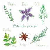 Watercolor herbs and spices — Stock Vector