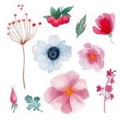 Watercolor flowers elements set. — Stock Vector
