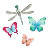 Watercolor butterflies and dragonfly — Stock Vector