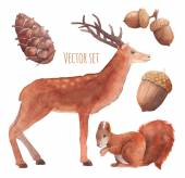 Watercolor forest wildlife set — Vecteur
