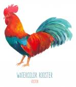 Watercolor multicolored rooster — Stock Vector
