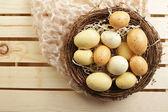 """Eggs in a Nest, """"Nest Egg"""" — Stockfoto"""