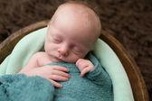 Sleeping Newborn in a Bowl — Stock Photo