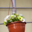 Artificial flowers in a pot — Stock Photo #59891493