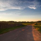 Eski asfalt yol — Stok fotoğraf