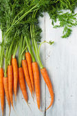 Carrots on the white background — Stock Photo