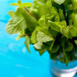 Mint bunch in a glass jar on the cyan background — Стоковое фото #59121063