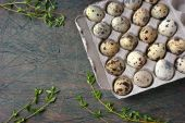 Quail eggs in the cardboard packing on the grey table — Stock Photo