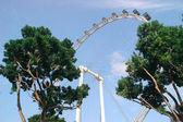 The Singapore flyer ferris wheel view — Stock Photo