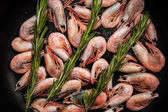 Shrimps with sprigs of rosemary in a pan close - up — Stock Photo