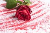 Rosa para el día de San Valentín — Foto de Stock
