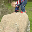 Funny kid wins his first top of the rock — Stock Photo #60128063