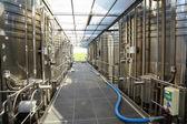 Tanks of wine — Stock Photo
