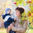 Young mother woman girl holding baby kid son on autumn rowan bac — Stock Photo #58638519