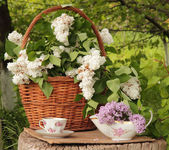 Cup of tea and lilac in a wattled basket on a wooden stub — Stock Photo