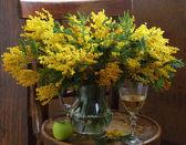 Martwa natura z wina i bukiet Mimoza — Zdjęcie stockowe