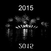 2015 with fireworks with reflection on lake — 图库矢量图片