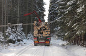 Truck with log in road in forest in winter — Fotografia Stock