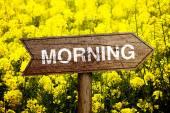 Morning roadsign — Stock Photo