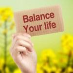 Balance your life — Stock Photo #75103823