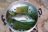 Паровой сибас рыбы — Стоковое фото
