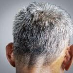 Gray hair — Stock Photo #64011217