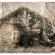 Retro card, old photo, an abandoned house in the bush — Stock Photo #64600111