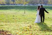 Elegante noiva e noivo posando juntos ao ar livre — Fotografia Stock