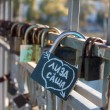 Names on the padlocks as a proof of love — Stock Photo #58382089