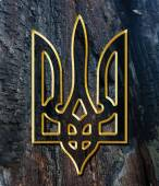 Ukraine Coat of Arms. Gold on wood texture — Stock Photo
