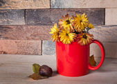 Yellow flowers in red cup — Stock Photo
