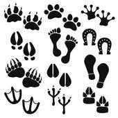 動物、鳥、人の痕跡 — ストックベクタ