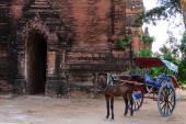 Horse Cart ,  Bagan in Myanmar (Burmar) — Stock Photo